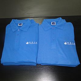 Polo-shirt-ê ji hêla A3-t-shirt printer WER-E2000T veşartî kirine