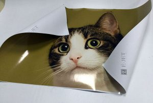 Sample printing print from 1.6m eco solvent printer